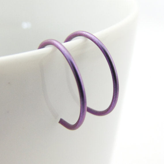 Purple Niobium Hoop Earrings
