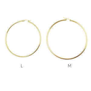 Regular Gold & Silver Hoops Earrings