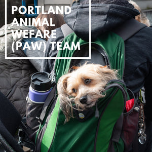 Our Trip to PAW Team