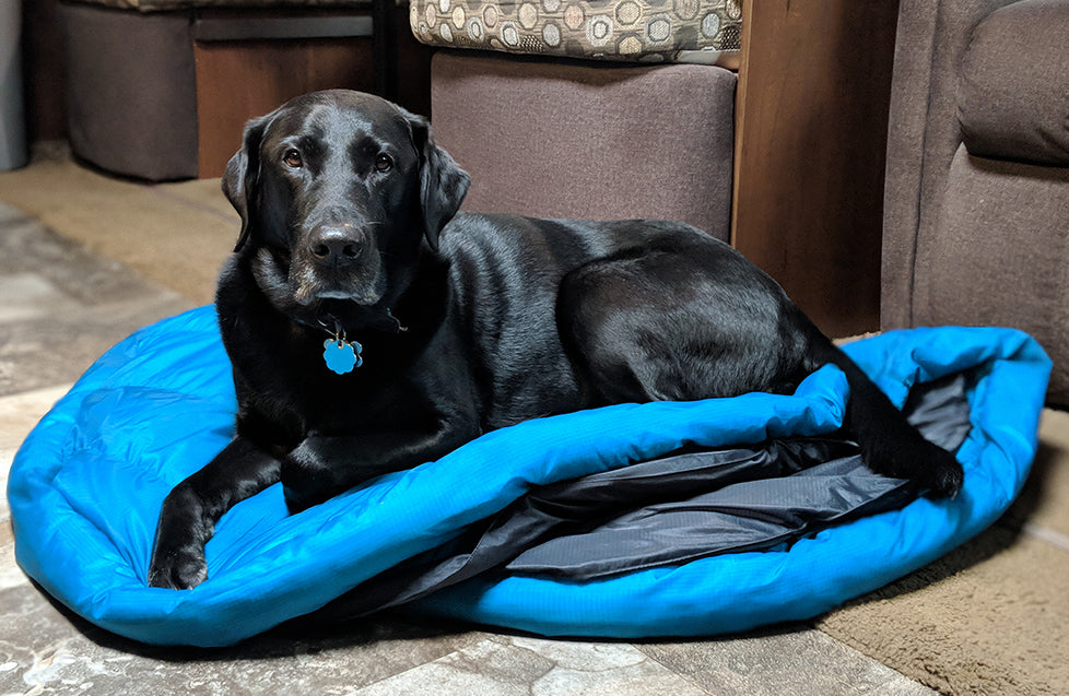 dog on dog sleeping bag and travel bed by whyld river