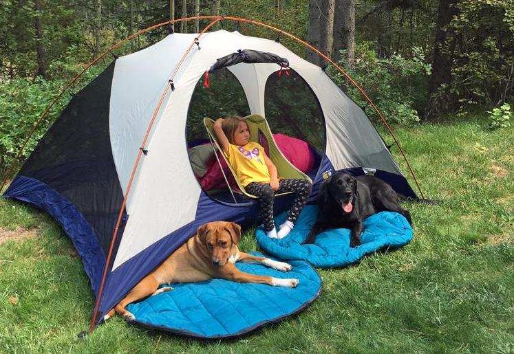 Dog Sleeping Bag Review Garage Grown Gear Whyld River's DoggyBag