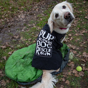 Whyld at Heart - Donate a DoggyBag