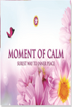 Moment of Calm Desk Calendar