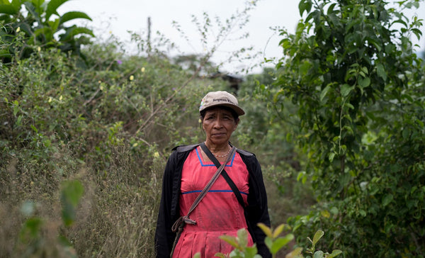 Local Andean woman and Nunaia grower in the serum's natural landscape