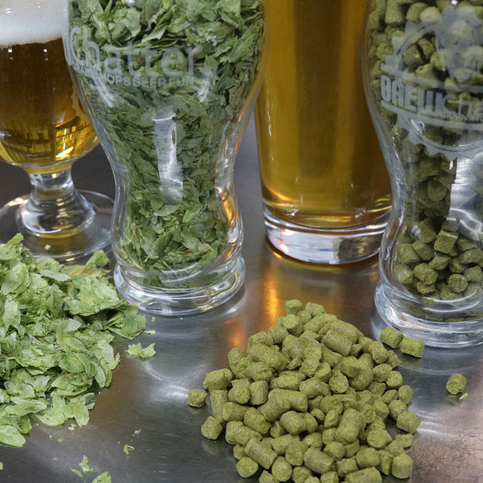 Whole Cone Hops vs. Pellet Hops