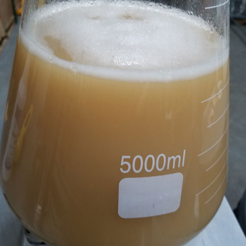 Homebrewing with Yeast Starters:  How and Why