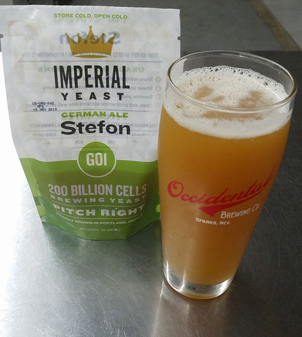 Brew organic with Briess Organic Malt and Imperial Organic Yeast