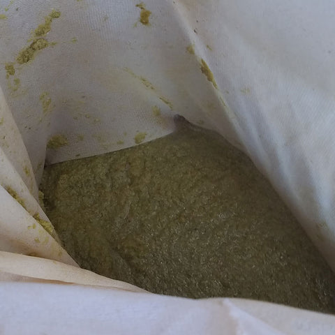 Hop Turd, boil hops, alpha acids, terpenes, beermaking, homebrew, homemade, homegrown, pellet hops, hop pellet