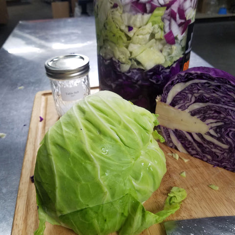 weight loss, fermentation process, cabbage roll, world war, cabbage leaf, shelf life, sea salt, savoy cabbage, dairy products
