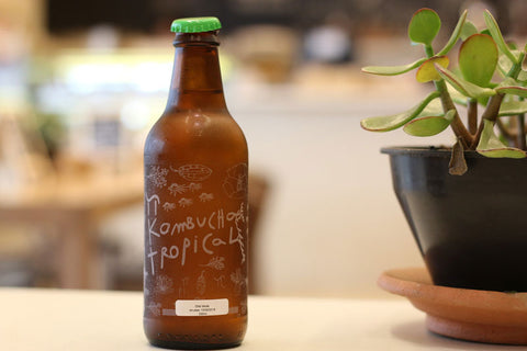 Bottled Kombucha Homebrew