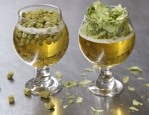 Whole Leaf Hops, Whole Cone hops, pellet hops, t90, t45, cryohops, leaf, ipa, pale ale