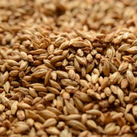 Peated Malt, Specialty Grains - BrewChatter HomeBrew Supply