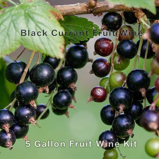 5 Gallon Black Currant Fruit Wine Recipe Kit