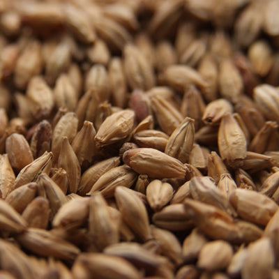 Aromatic Malt, Body Malts - BrewChatter HomeBrew Supply