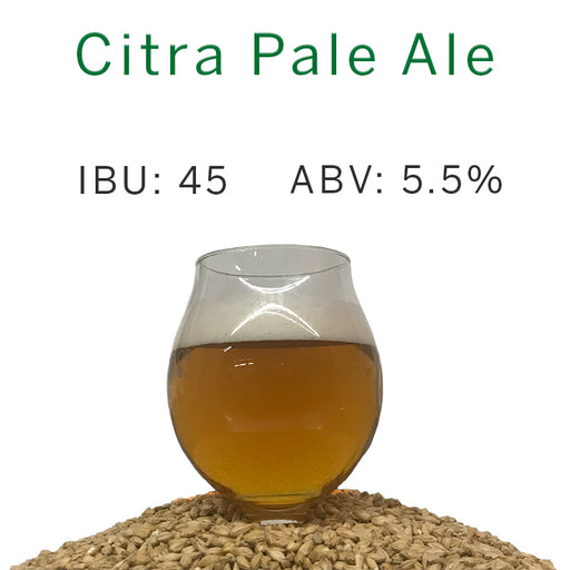 Citra Pale Ale – All Grain