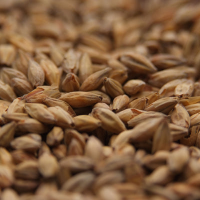 Gambrinus Honey Malt, Specialty Grains - BrewChatter HomeBrew Supply