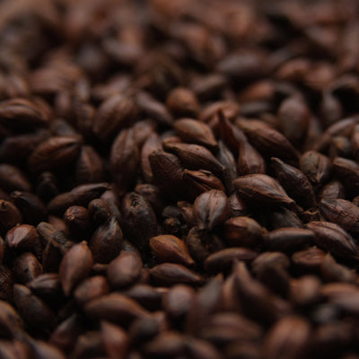 English Chocolate Malt, Roasted Malts - BrewChatter HomeBrew Supply