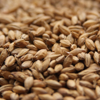 Acidulated Malt, Specialty Grains - BrewChatter HomeBrew Supply