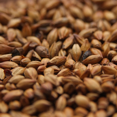 Cherrywood Smoked Malt, Specialty Grains - BrewChatter HomeBrew Supply