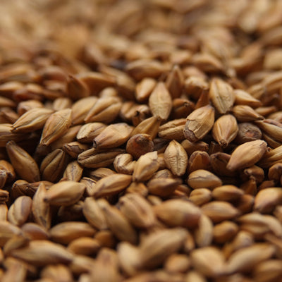 English Amber Malt, Specialty Grains - BrewChatter HomeBrew Supply