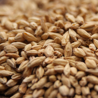 Victory Malt, Body Malts - BrewChatter HomeBrew Supply