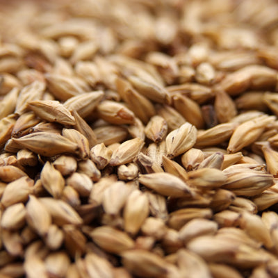 German Pilsner Malt, Base Malts - BrewChatter HomeBrew Supply