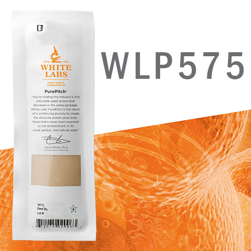 WLP575 Belgian Ale Yeast Blend PurePitch