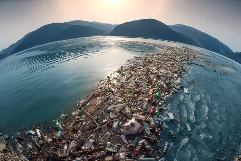 Ocean Plastics Pollution