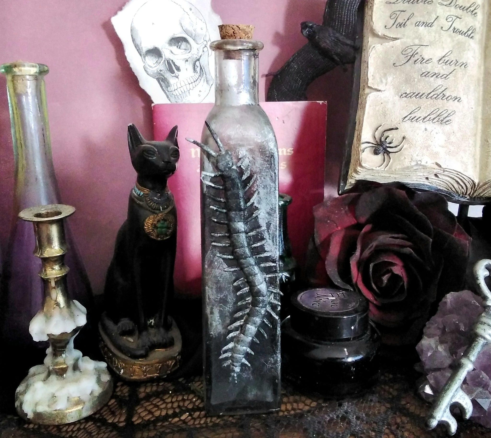 SWAMP WATER Apothecary Jar - Witch Ingredient Jar Props and Decor