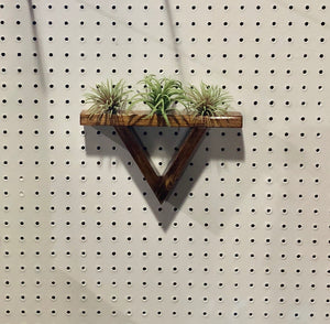 Floating Shelf Triangle Air Plant Holder