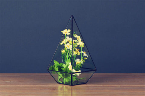Pyramid Tabletop Terrarium
