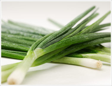 Green Onion (1 Bunch)