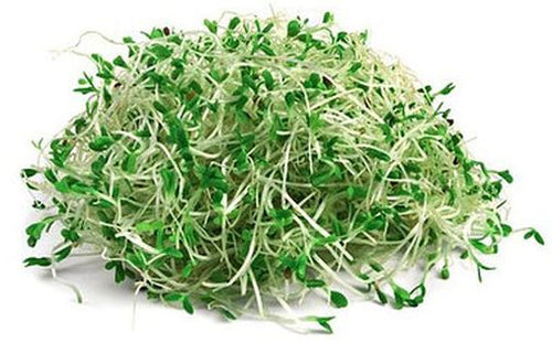 Acre 10 Broccoli Microgreens (Clamshell)