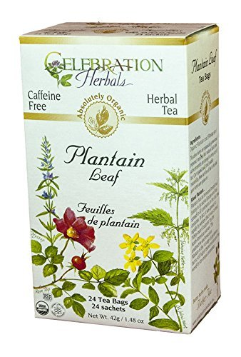 Celebration Herbals Plantain Leaf Tea