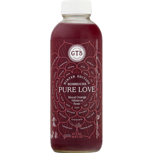 GT's Pure Love Kombucha (480ml)