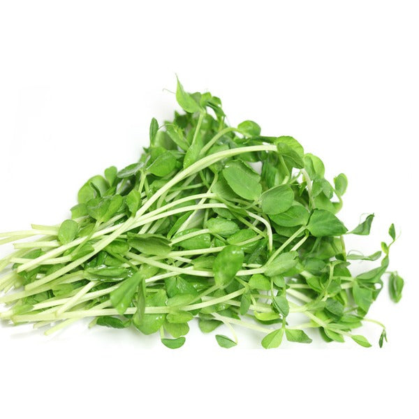 Cedar Creek Gardens Pea Shoots (Clamshell)