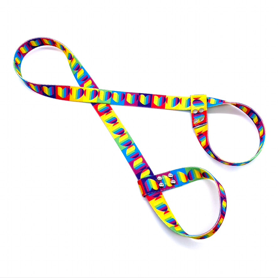 Rainbow Heart Skate Leash