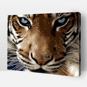 Paint By Numbers - Paint By Numbers Tiger™ Blue Eyed Tiger