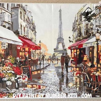 Paint By Numbers | Rainy Paris Street