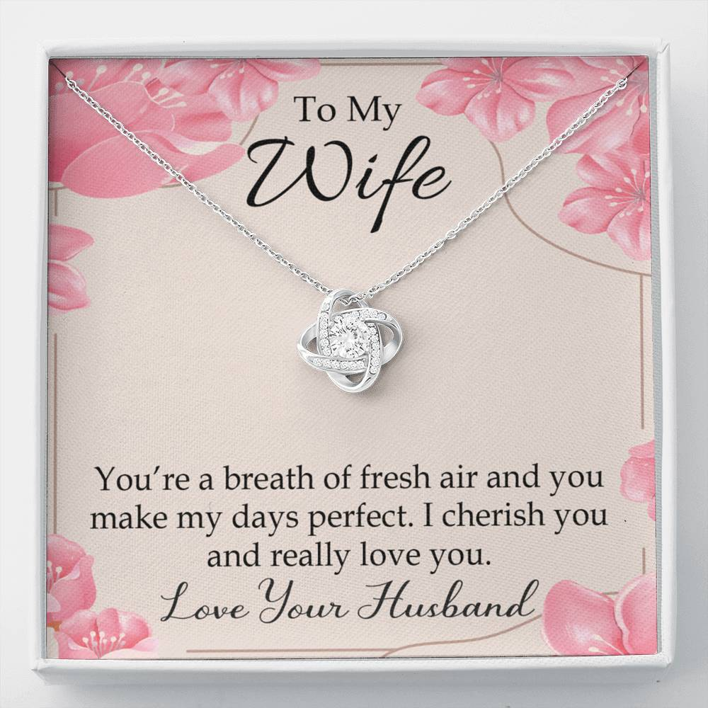 To My Wife You're a Breath of Fresh Air Wife Infinity Knot Necklace Keepsake Message Card Stainless Steel CZ Pendant