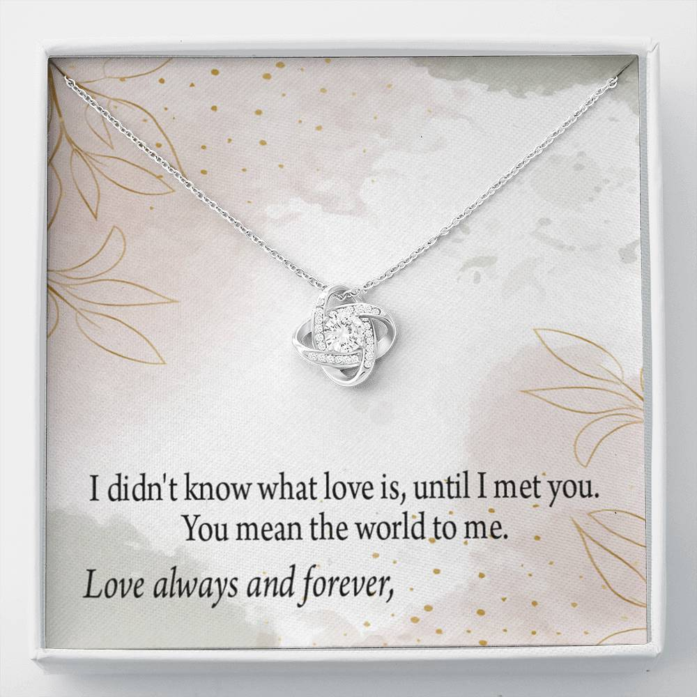 To My Wife Personalized Romantic Message Card Love Knot Necklace Stainless Steel w Cubic Zirconia Stone