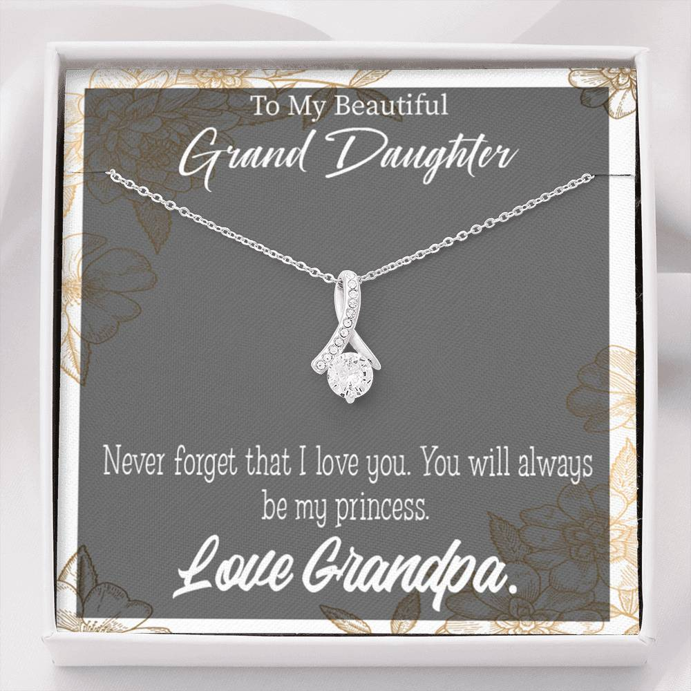 Granddaughter Gift, Grandpa's Princess Eternity Ribbon Stone Pendant,14k White Gold Stainless Steel 18-22""
