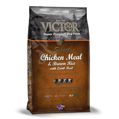 Victor Chicken Meal & Brown Rice with Lamb Meal