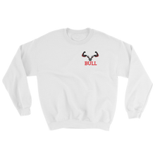 BULLGnG Pull Over Sweater