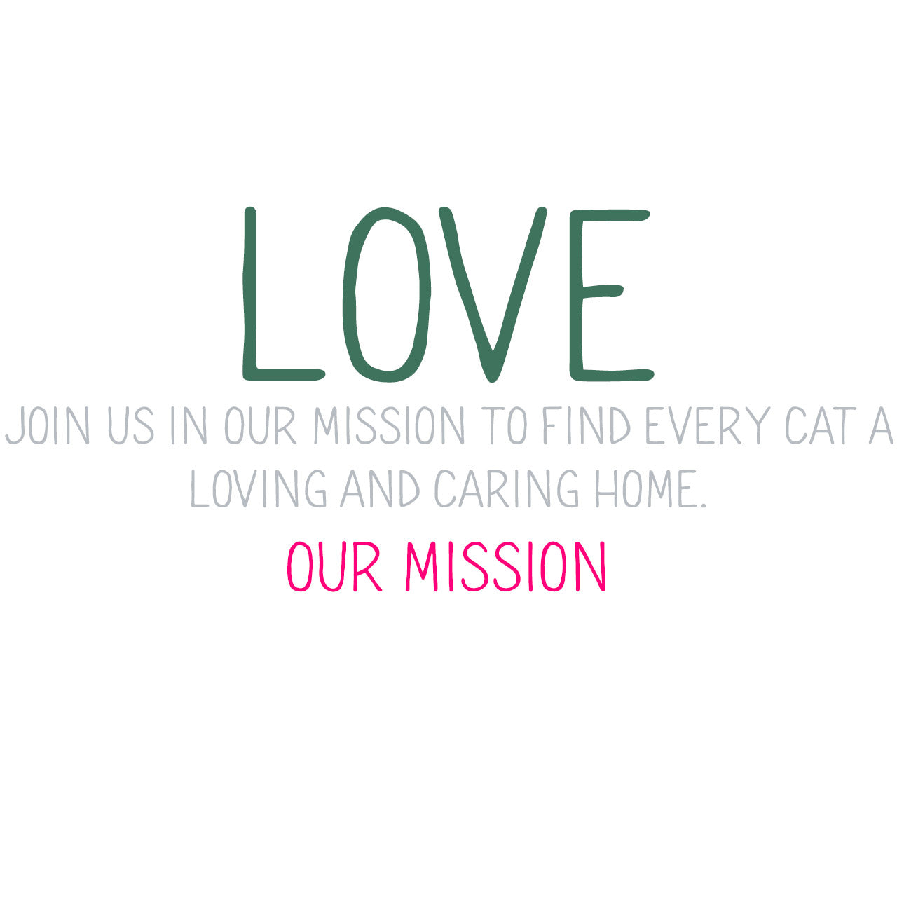 Our Mission Kittie Kittie Rescue