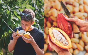 Hana Hou! Magazine: The Connoisseur of Cacao-Maui Kuʻia Estate Chocolate