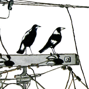 PRINT: magpie high  |  from original