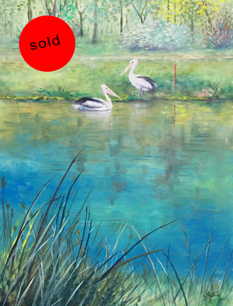 two pelicans  |  46x61cm  |  original oil painting SOLD