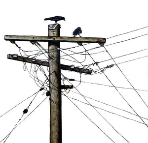 PRINT: elecrtric crows  |  40x40cm - from original