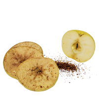Load image into Gallery viewer, Freeze Dried Spicy Apple Snack Pouch